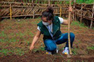 En Satipo capacitan a nativos para la instalación de huertos familiares