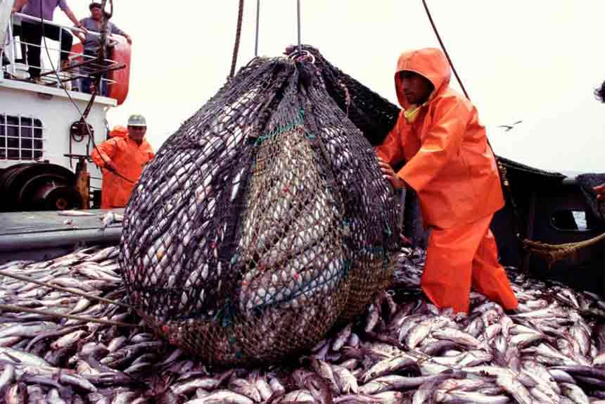 SNI propone 10 medidas para dinamizar los sectores pesca, construcción y confecciones en los próximos 30 días